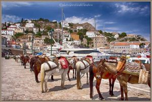 Island of Hydra Athens Day Cruise